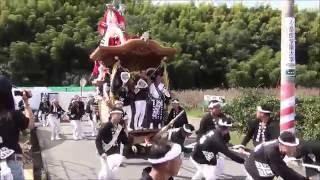 平成28年 山滝だんじり祭り 宵宮 内畑・下出 みかん畑 2016/10/08(土)