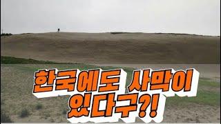 한국에도 사막이 있다규?? - 신두리 해안사구 탐방