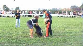 Video By Www.nikferre.com Hera 30°camp Sociale Rottweiler Club 06 Ottobre 2012