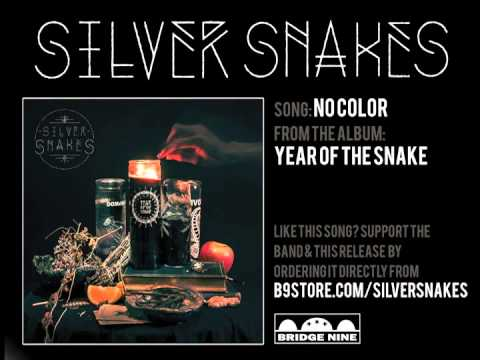 Silver Snakes - No Color
