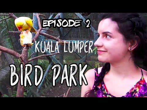 BIGGEST BIRD PARK IN KUALA LUMPUR!! | Lake Gardens | Malaysia | Travel Vlog #2