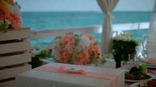 Свадебный клип SDE 29.08.15 Свадьба у моря в Одессе