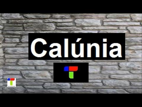 24 Calúnia