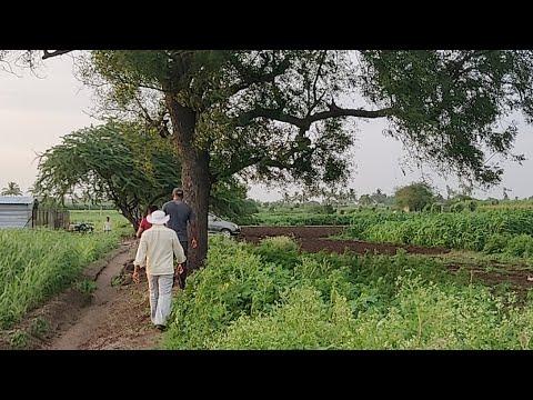 Farm Land Near Pune City | How is Vishal ji Doing Farming in an Advanced Manner | SaudaGhar Farm2020