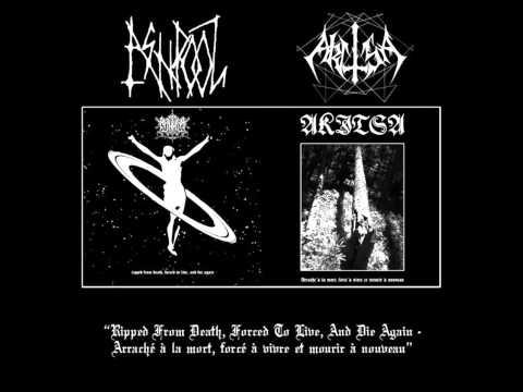 Ash Pool - Death Has No Mother
