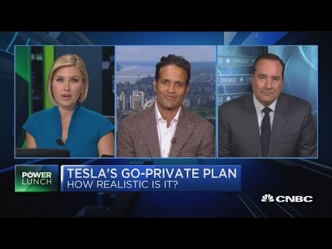Tesla stock pricing in zero probability of going private: Analyst