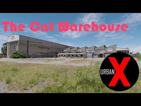 EXPLORNG ADELAIDE: The Cat Warehouse