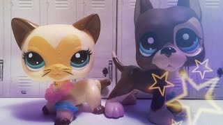 LPS: School Stars episode 1 (The New Girl)