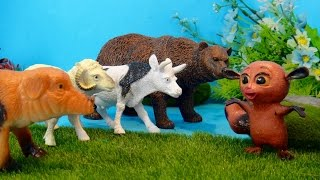 ЗАЧЕМ УЧИТЬСЯ Всё перепутал Мультфильмы про животных для детей