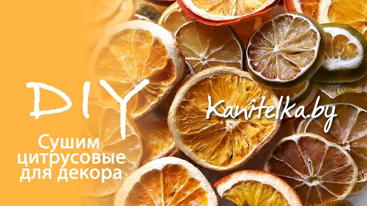 Как сушить цитрусовые для декора в электросушилке для фруктов и овощей.