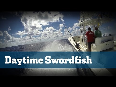 Daytime Swordfishing Deep Drop South Florida - Florida Sport Fishing TV