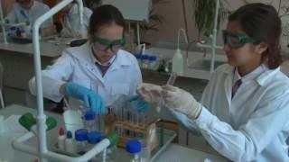 Формативное оценивание на уроках химии 8 класс при изучении раздела 8 4В «Вода» Часть 2