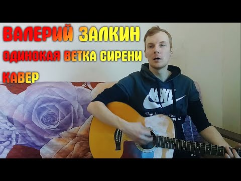 Валерий Залкин - Одинокая ветка сирени | кавер на гитаре