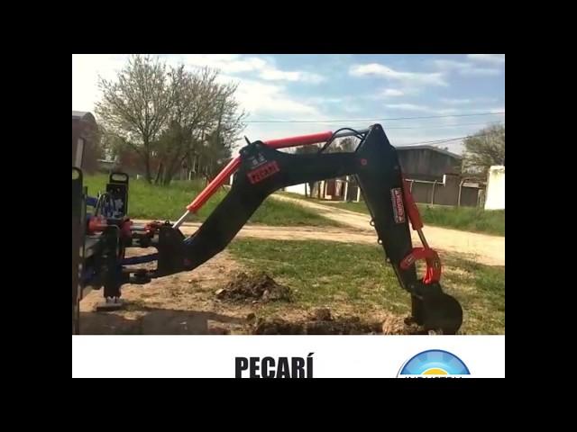 Excavador Professional - Parana - Octubre 2019