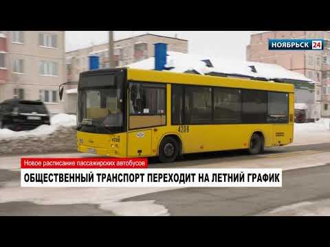 Перевозчики меняют расписание автобусов в Ноябрьске