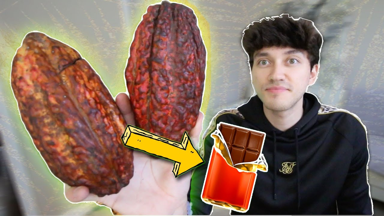 Making a CHOCOLATE BAR from the FRUIT! (cacao pod)