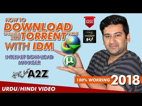 Best Way To Download Torrent Files | Internet Download Manager | Infotainment Urdu |