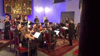Maxim Berezovsky - Sinfonia (ca.1770) - Pratum Integrum Orchestra & Pavel Serbin