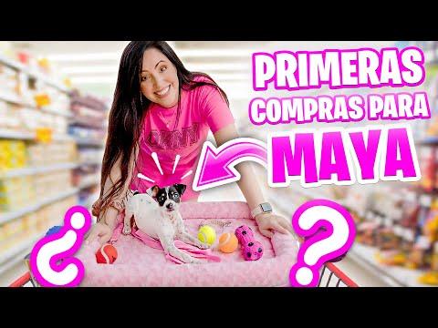PRIMERAS COMPRAS para MAYA Perrito Bebé 🐶 HAUL Puppy Shopping Spree 😅 Sandra Cires Art