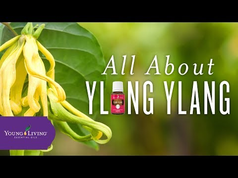 all-about-ylang-ylang-|-young-living-essential-oils