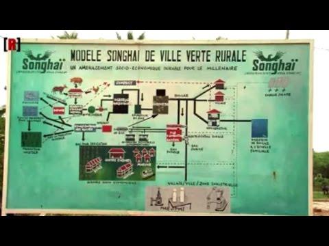 Songhaï, une ferme bio au cœur de l'Afrique