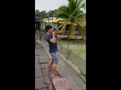 Caught A Huge Fish!!! Fishing In Singapore