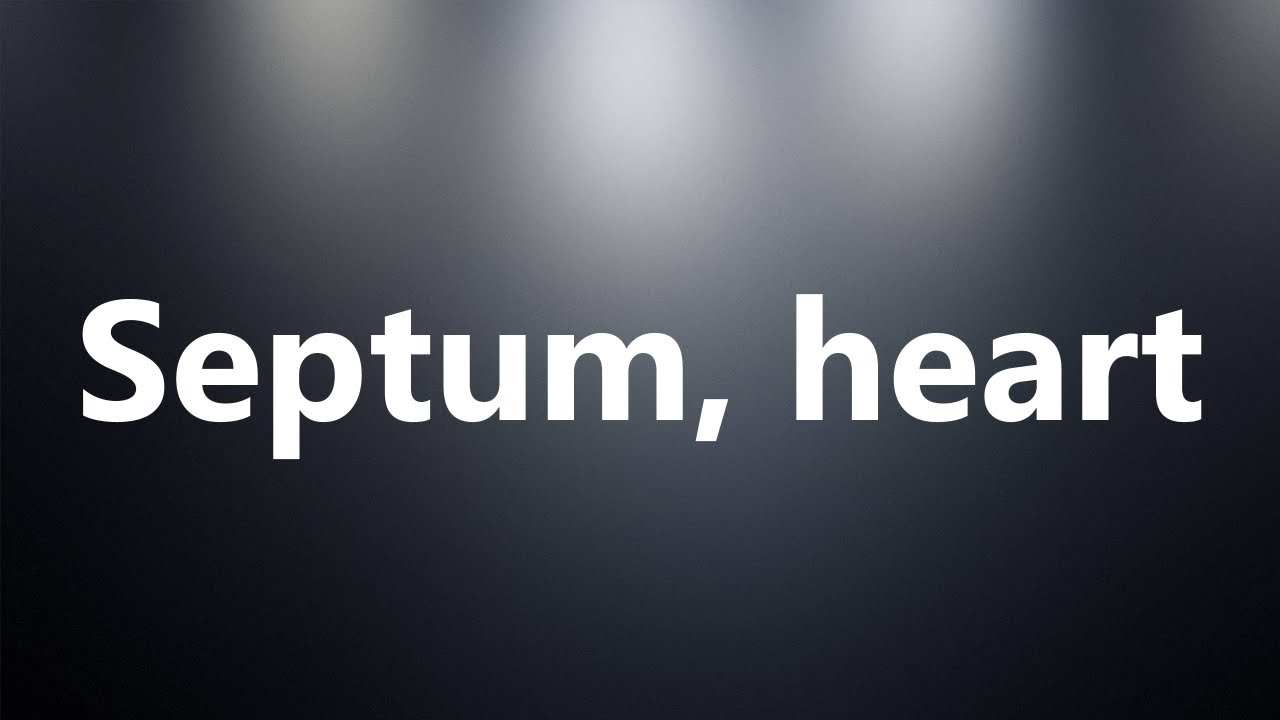 Septum Heart Medical Definition And Pronunciation Youtube