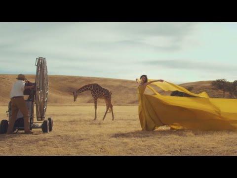 Taylor Swift  Wildest Dreams  Lyrics video