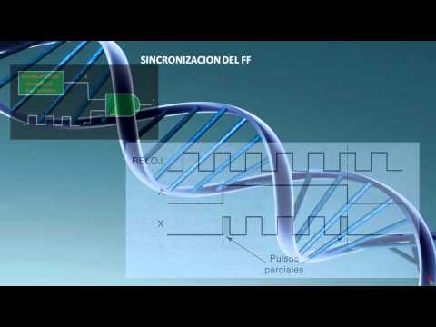 5 FLIP FLOPS TRANSMISION DE DATOS 5_3