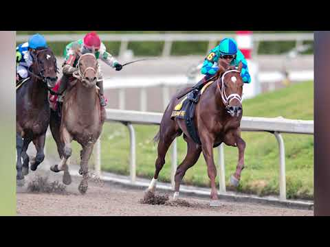 Download 2018 Florida Derby Free Pick At Gulfstream Park Win Place