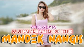 Vita Alvia - MANDEK NANGIS   Remix Version 2021 (Official Video)