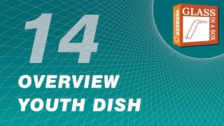 14 Youth Dish Overview
