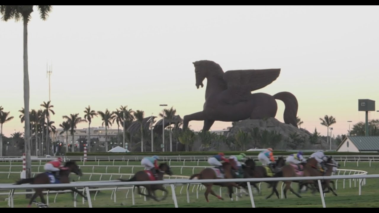 Off to the Races: Gulfstream Park in Hallandale Beach ...