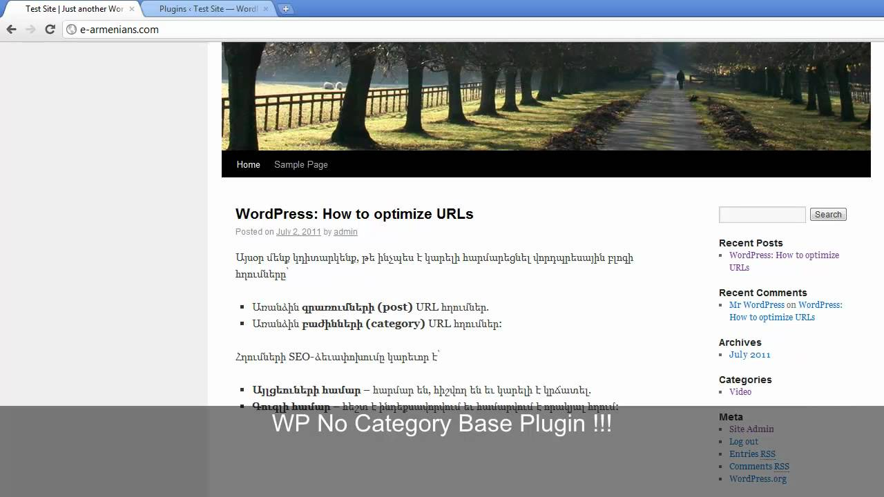 VideoTip# 1 by e-armenians.com - WordPress: URL optimization