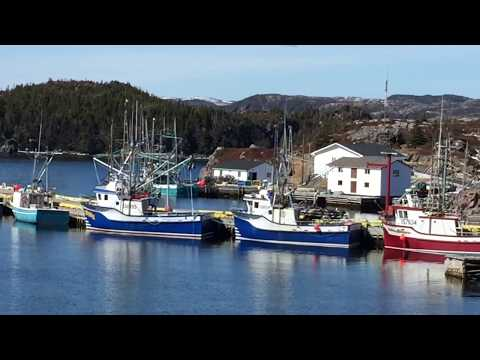 A view of Southport Trinity Bay Newfoundland.