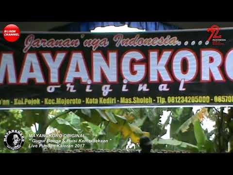 mayangkoro-original-lagu-gugur-bunga-live-punden-kaloran-2017