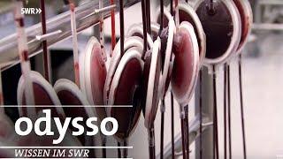 Was passiert mit meinem Spenderblut? | SWR odysso