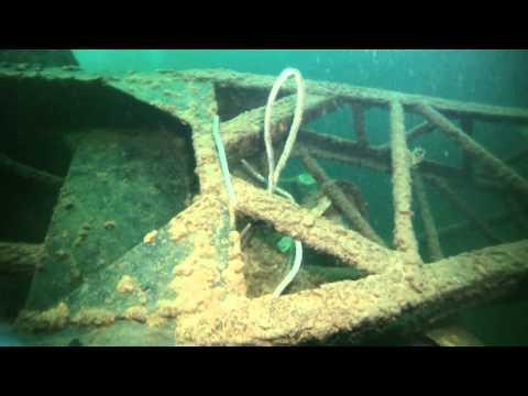 Crane Dive