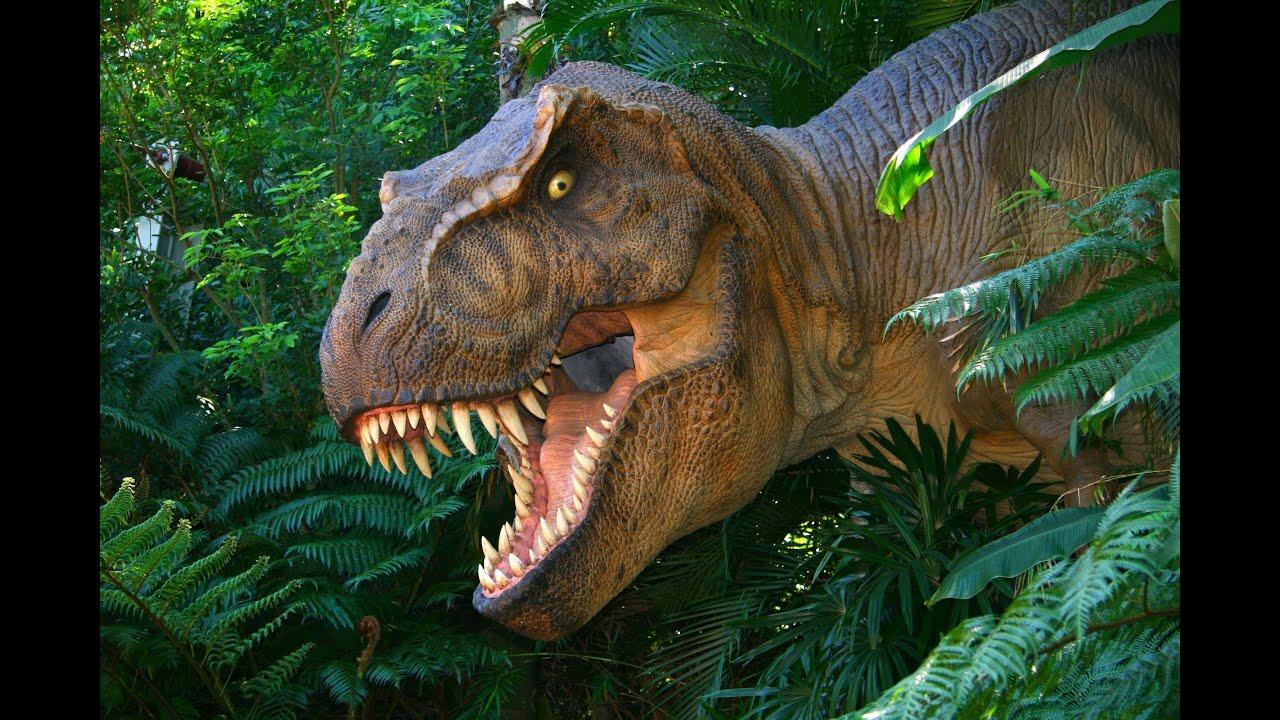 T rex attack in animal jam youtube for Tyranosaurus rex