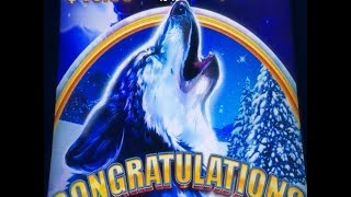 ★Finally Super Big Win☆TIMBER WOLF GRAND Slot machine★$2.25 & $3.00 Bet @ San Manuel☆彡栗スロ/カジノ