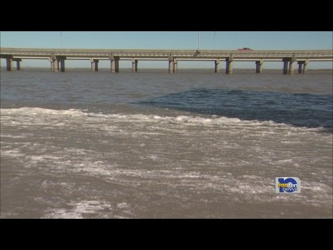 Cold weather affects Mobile Bay