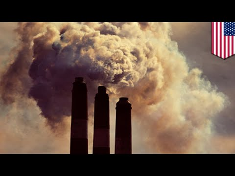 Emisi karbon: karbon baru tertangkap dan teknologi mampu menjebak 90% emisi - TomoNews
