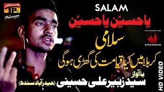 Syed Zubair Ali Hussaini 2017-18