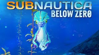 Subnautica Below Zero #02 | Seamonkey klaut meinen Scanner | Gameplay German Deutsch thumbnail