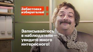 Дмитрий Быков о важности наблюдения