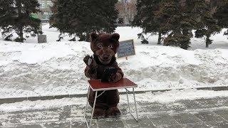 На площади Ленина открылась общественная приёмная медведя