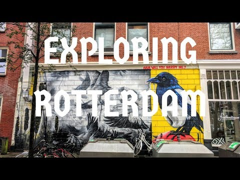 Travel to Rotterdam: Exploring Dutch Food, Architecture and the Nightlife
