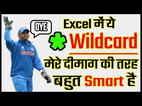 How to use Asterisk Wildcard Character in Excel in Hindi | *