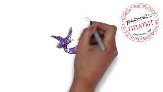 Смотреть как рисовать русалку  Как можно нарисовать русалку(как нарисовать русалку, как нарисовать русалку поэтапно, как нарисовать русалку карандашом, как нарисовать..., 2014-07-30T06:51:57.000Z)