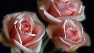 Красивая музыка и цветы для души!!!